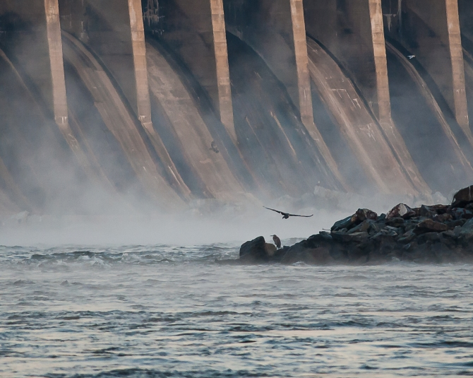 Conowingo Eagles Oct 2013-4